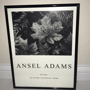 ANSEL ADAMS FRAMED FOLIAGE PICTURE
